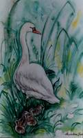 Swan with young ones - MagdalenaArt
