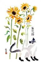 Vincent Sunflower Cat