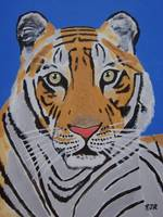 TIGER IN BLUE
