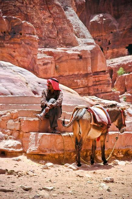 Portrait of Man with Donkey.. Petra,Jordan in reds