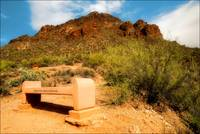 Bench in the Desert