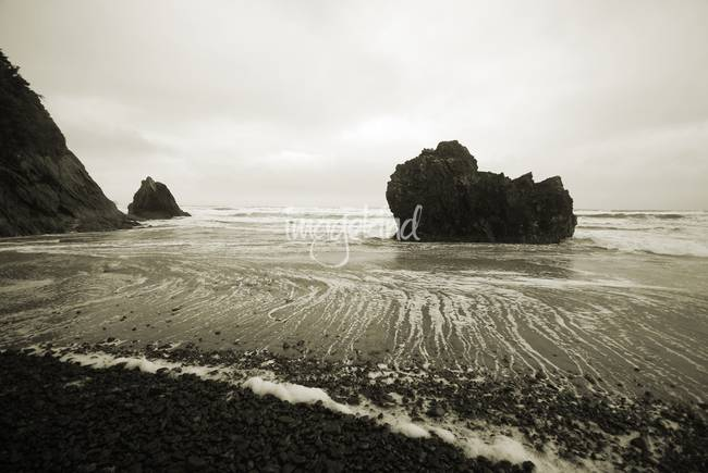 Tranquil Oregon Beach