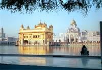 Golden Temple Morning