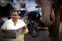 India-Man-Reading-Newspaper