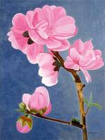 Lunar New Year Peach Flowers