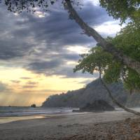 Costa Rica Beach & Jungle by Eileen Ringwald