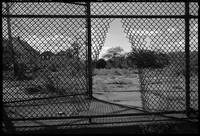 Fence Rip, Far Rockaway, New York