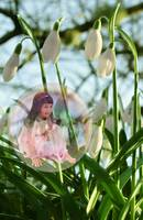 Snowdrop Fairy in a Bubble