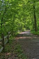 Fenced Path #2 (IMG_7887+) by Jeff VanDyke