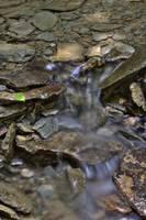 Pearl Ravine #3 (IMG_7962) by Jeff VanDyke