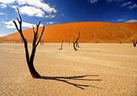 Dead Vlei Shadow
