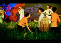 Beauty of the southern Vietnamese ladies. (a film