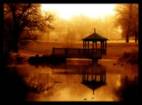 golden pond - orton