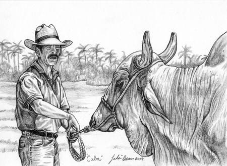 Man and Bull by Julie Deans