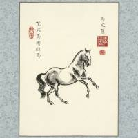 """Dressage Horse"" by JeanneRewa"
