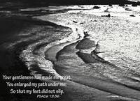 Tranquil Tide Water with PSALM 19-36 Bible Verse
