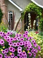 Country Garden by David Kocherhans