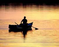 Fishing in evening glow