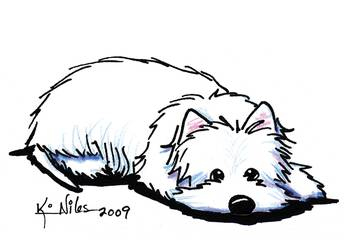 Pouting Westie Terrier By Kim Niles