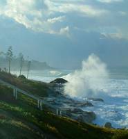 Windansea Beach