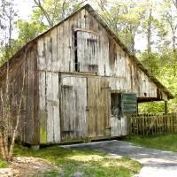 Watercolor Old Barn in Mandarin Florida by Barbara Wilford Gentry