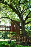 treehouse haven