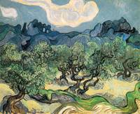 The Olive Trees 1889 by Vincent Van Gogh