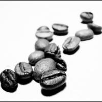 coffee beans Art Prints & Posters by Olga zabalkanskaya