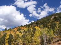 Colorado; Road to Cripple Creek