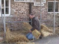 Thatching Whitehall 22