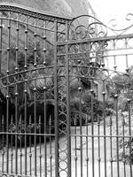 New Orleans Gated Entry Black and White