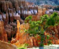Views of the Hoodoos in Bryce Canyon