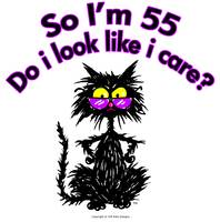 55th Birthday Cat