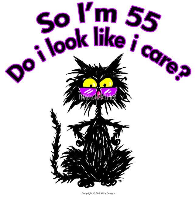 th Birthday Cat_art?v=1492113638 55th birthday cat by tuff kitty