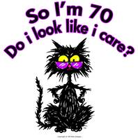70th Birthday Cat