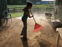 Sweeping the Barn Floor