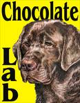 Yellow Pop Pup Chocolate Lab
