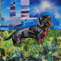 Dachshund in a Field Art Prints & Posters by Megan Coyle