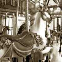 """""""Carousel 11"""" by JoanneMariol"""