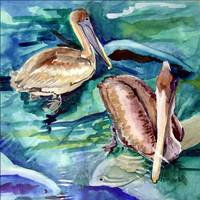 pelicans and fish