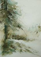 watercolor firtree