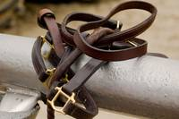Walking Bridle for Thoroughbred Race Horse 8455