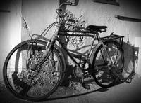 The old bike