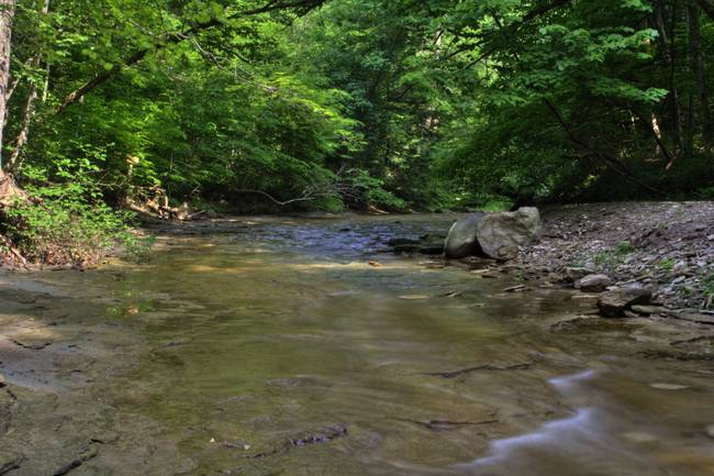 Clifty Creek #1