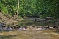 Clifty Creek #5 by Jeff VanDyke