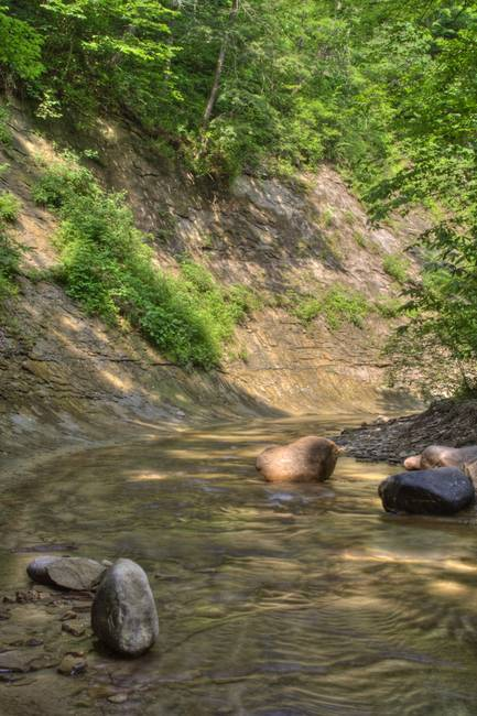 Clifty Creek #8