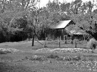 Old Barn (B&W)