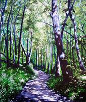 Summer Woods (Carriage Trail, Moses Cone State Par