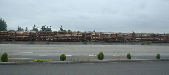 Log Train, St Helens, Oregon, USA