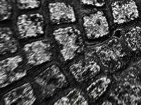 Amsterdam Cobblestone      Black and White Edition